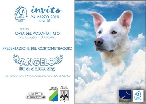 Lega-del-Cane-LAquila-proiezione-Angelo-locandina